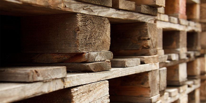 Funding boost to support restructure of leading timber business